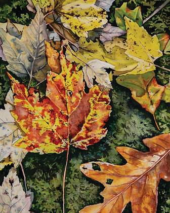 5x7 inch Fall Leaves (5 Pack)