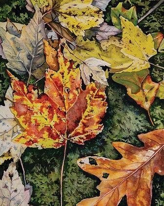 Fall Leaves, Original Watercolor