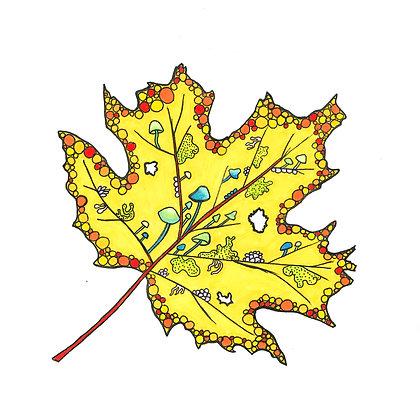 Untitled Fall Leaf