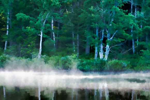 Fish Creek Shoreline #1