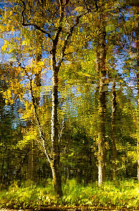 Rippling Autumn Shoreline Reflections