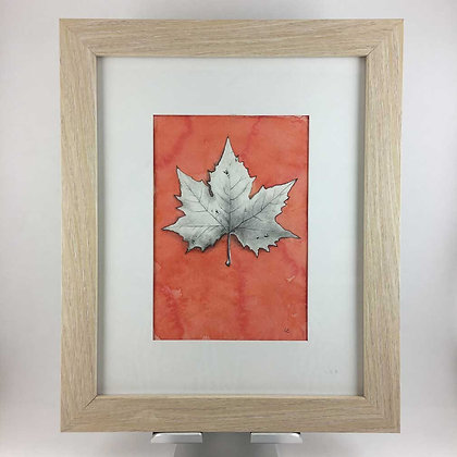 Sycamore Leaf Drawing