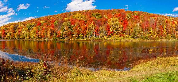 Cabic Pond Autumn Hillside Panorama