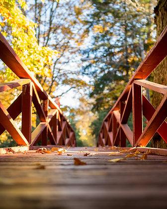 Bridge in Autumn, Chautauqua Institution, NY