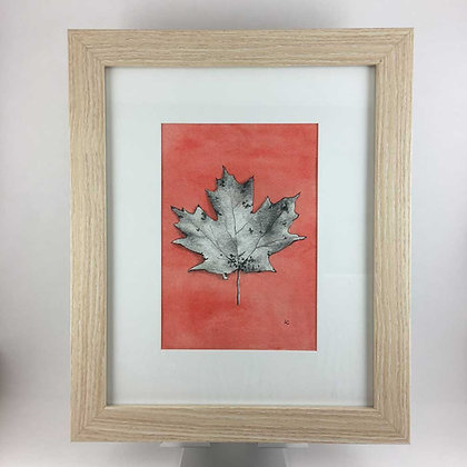 Maple Leaf Drawing