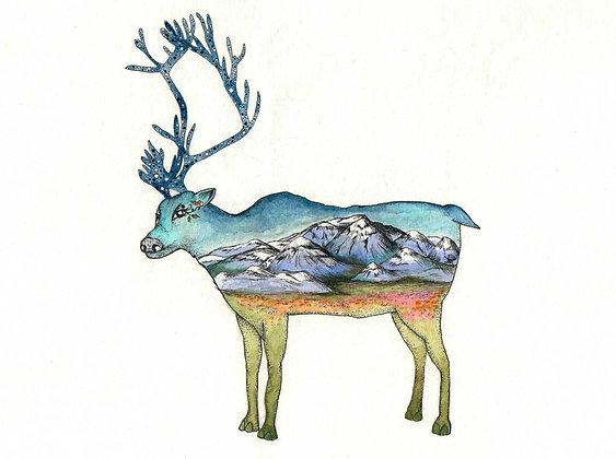 Denali National Park, 5x7 inch print series