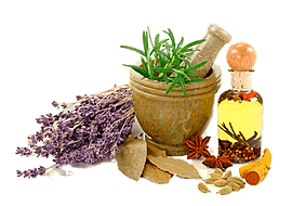 png-homeopathy-alternative-health-servic