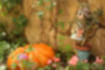 Garten-Dekorationen