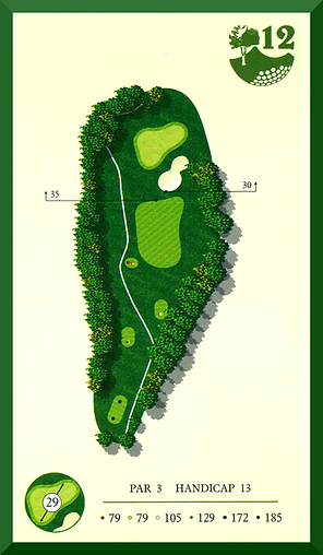 Hole 12.png