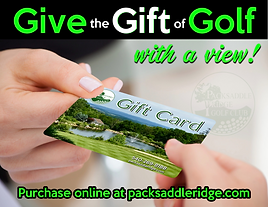 Gift Card Promotion.png