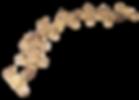 CFBCENT Centipede CROSSFIRE Brass Burner
