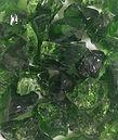 10 Light Green4_RGB.jpg