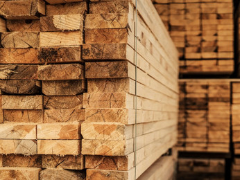 Sawn Timber Supplier Malaysia | Sawn Wood and Lumber