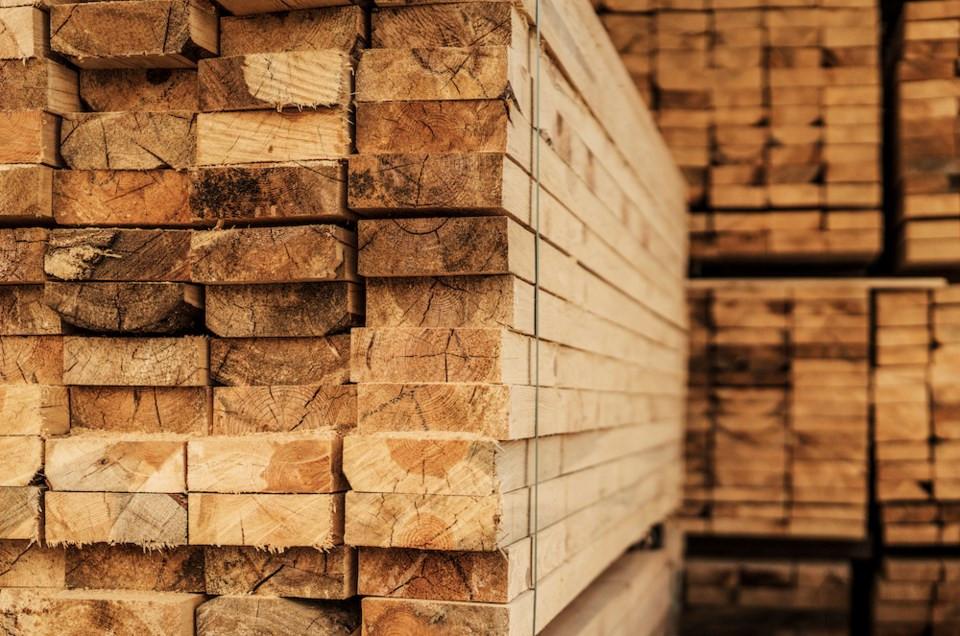Plain Lumber Malaysia