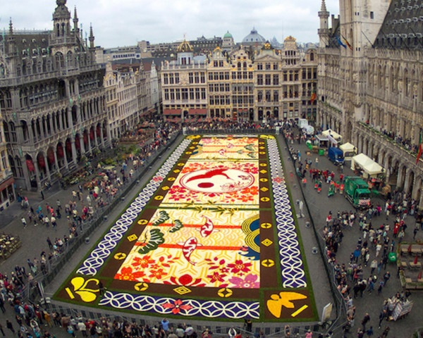 This gigantic flower carpet in Brussels is made of 600,000 blooms