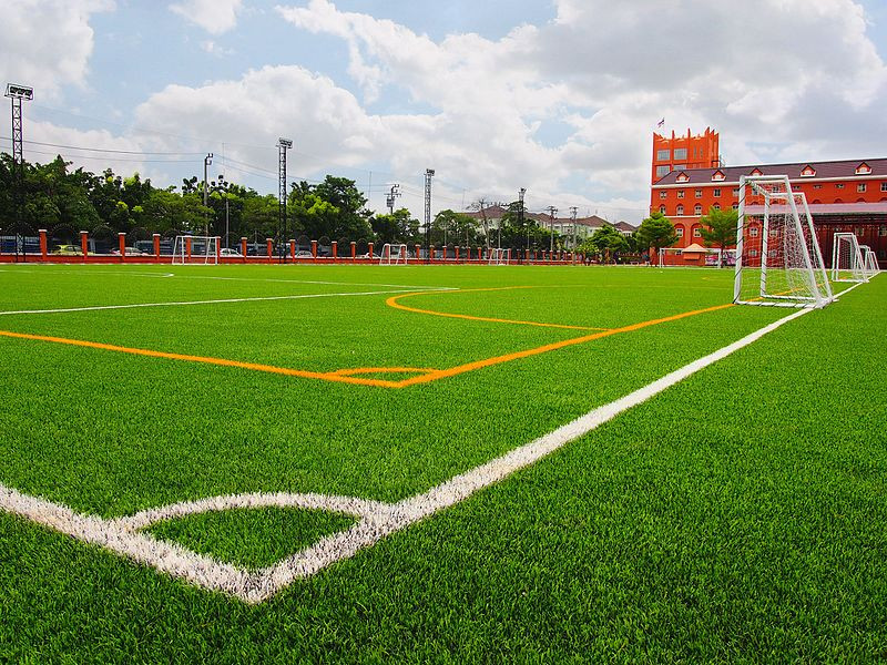 Football Grass Field Malaysia