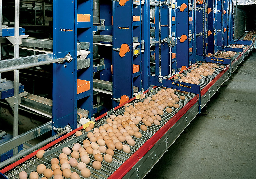 Poultry Equipment Malaysia