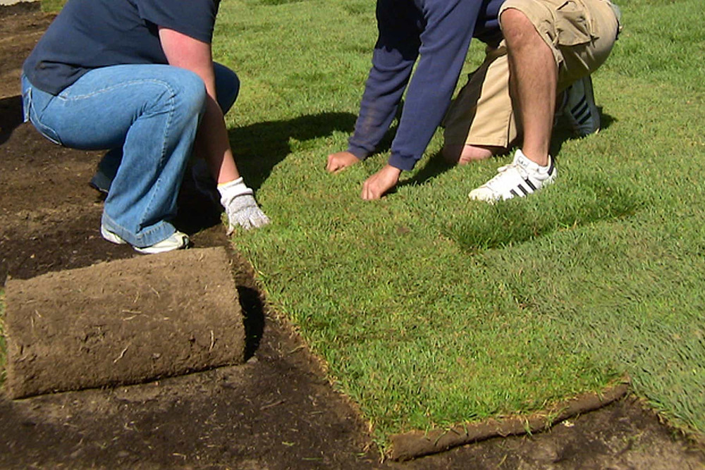 Turfing Contractor Malaysia