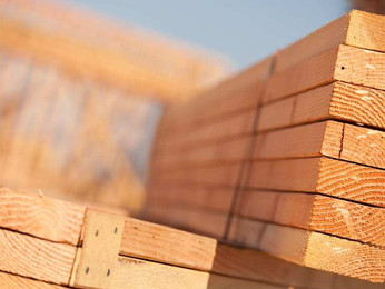 Timber Supplier Malaysia | Wide Range of Species