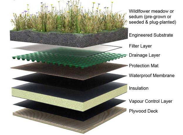 Green Roof Layer Malaysia
