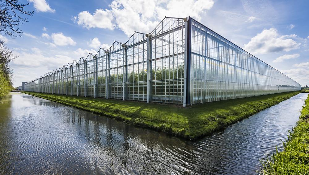 Greenhouse Malaysia