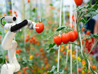 Smart Farm System ǀ Agricultural and Greenhouse Farming