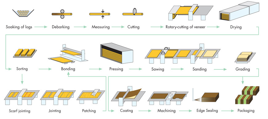 Plywood Manufacturing Process