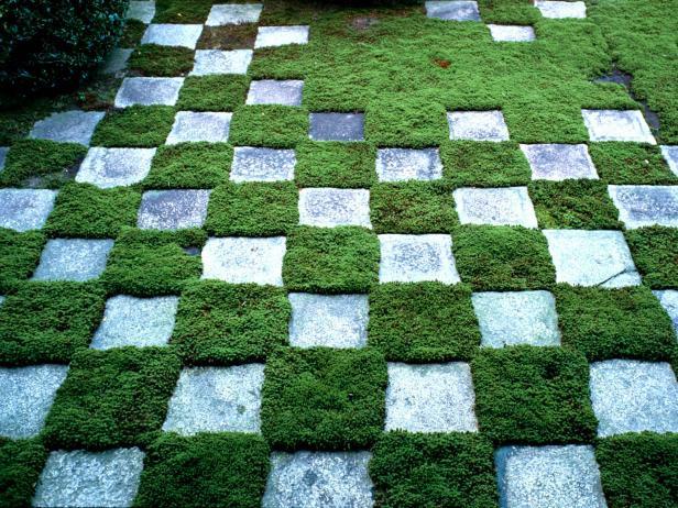 Landscape & Garden Malaysia