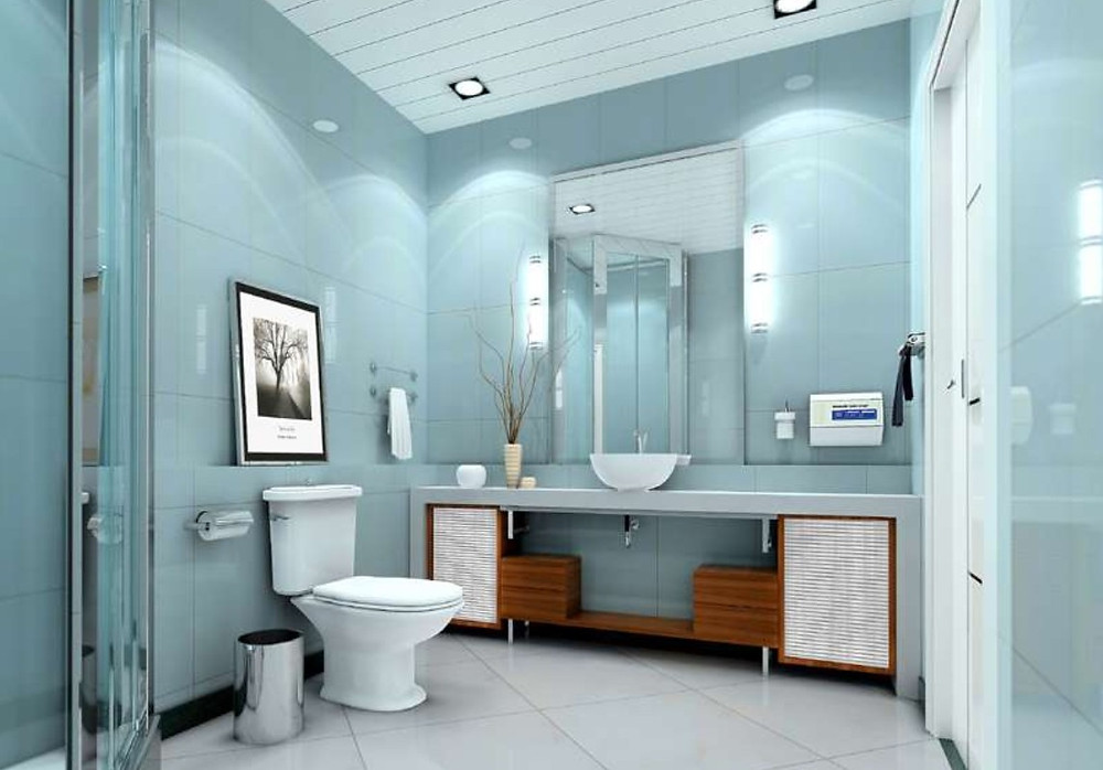 Toilet Design for Home