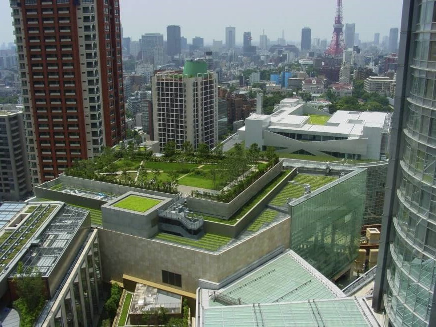 Center of Tokyo's Bustling Metropolis