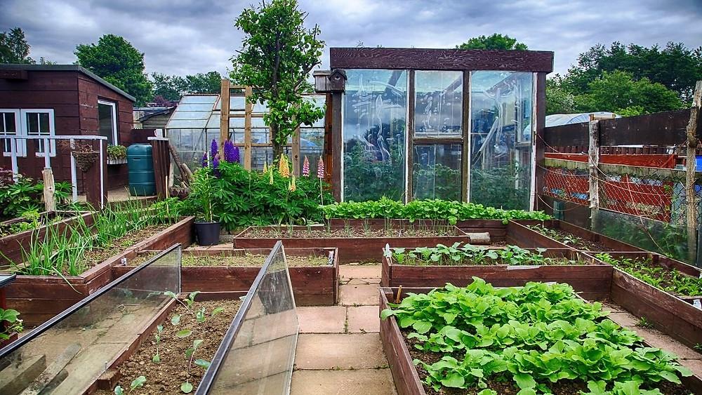 Greenhouse Design Malaysia