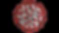 coronavirus-1-1536x864_edited.png