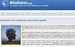 5-Mindfulnet.jpg