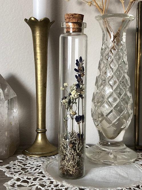 Botanical specimen jar no.4