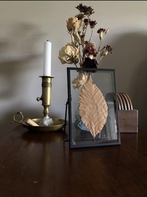 Glass framed press leaf
