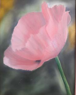 Meghana_Wagholikar_-_Pink_Poppy[1].jpg