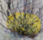 yellow bloom with sticks