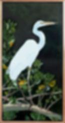 Benseman_C_Great Egret (1).jpg