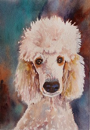guinevere McBride Dressed for Dinner.jpe poodle head with multi=coloured background