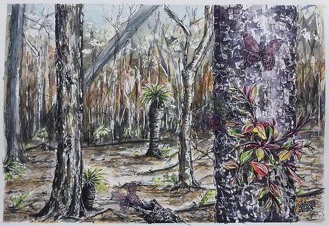 Robyn Carr 2. australian bushland with trees