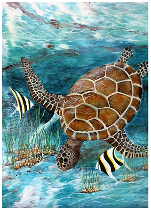 12. And There You Are Marta Blaszak png turtle with zebra fish.