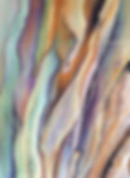 pastel painting of bark in sift mauves and blues and brownn