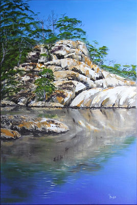 Wayne Boyle_Coombah Falls.jpg Water falling over rocks with trees.