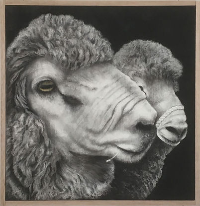 Chris Boulsover.Woolley Jumpers. two sheep heads in white and greys