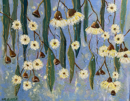 Sue Burton Gumnuts and Blossoms against a blue background
