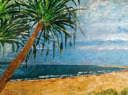 JHealey -  Shark Bay.jpg beach landscapw with palm tree to the left.