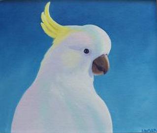 sue Butler Pretty Boy. Upper body og su;phur crested cockatoo on blue background