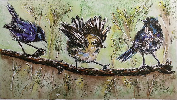 Robyn Carr - Three Fairy Wrens.jpeg on a branch with light green foliage