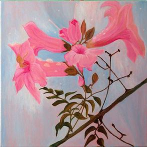 Wendy Kaye - Early Morning Dew.jpg Five pink trumpet like flowers