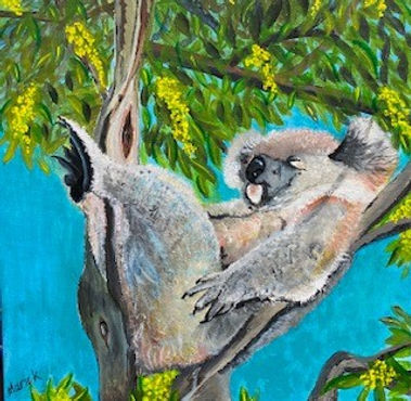 Marie Kennedy - Koala.jpg koala relaving in fork of a tree